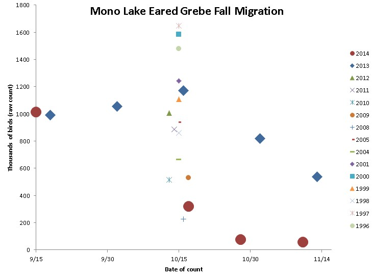 Thousands of Eared Grebes on Mono Lake during fall migration since 1996. Raw numbers should be increased by 15% to account for diving birds and match the numbers in the article.