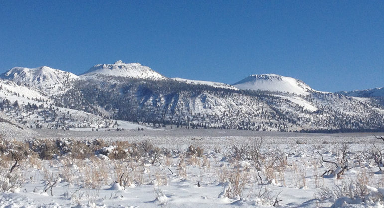 The Mono-Inyo craters covered in bright white snow seen rising above the desert scrub also covered in snow.