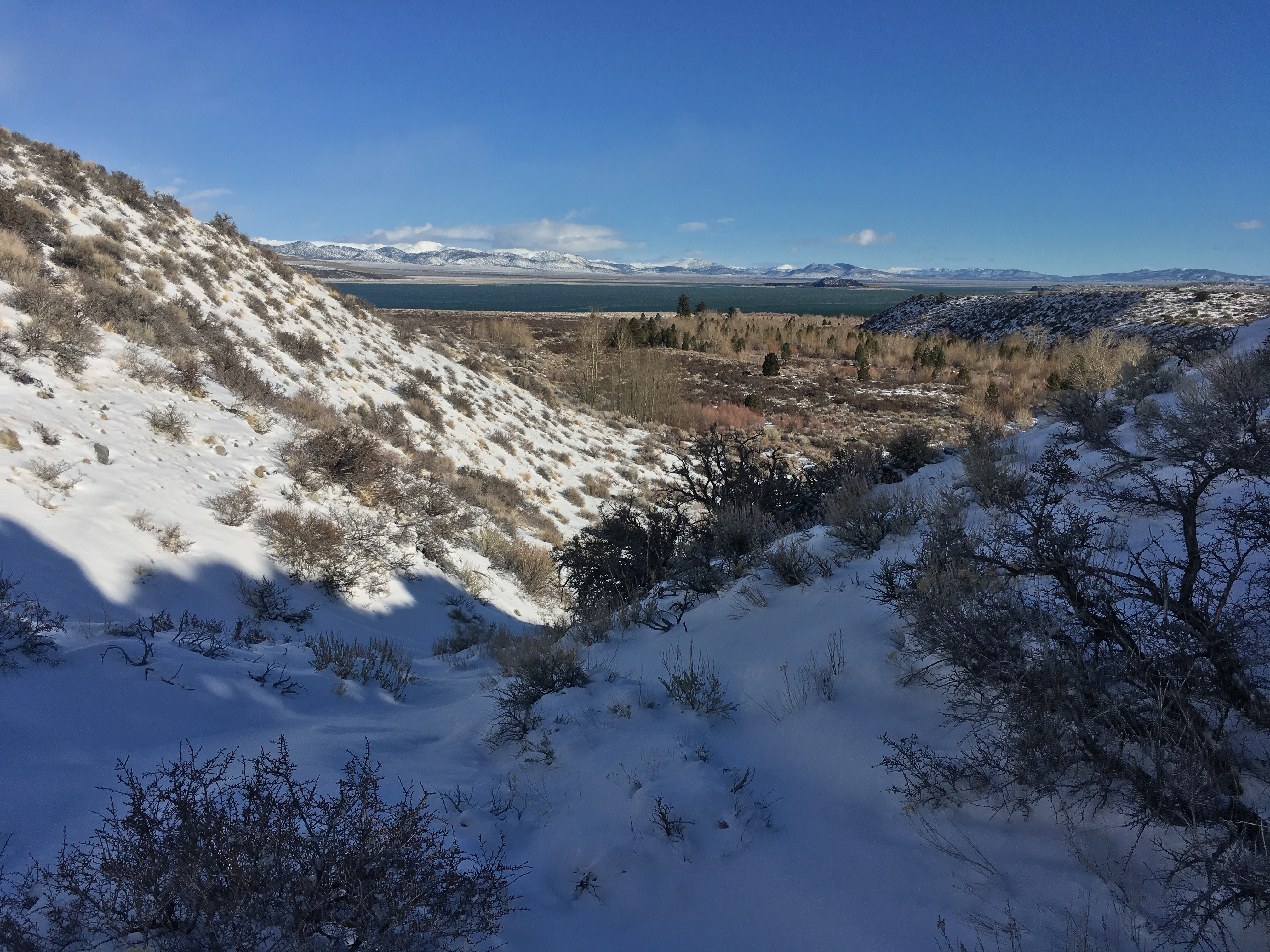 Descending into Lee Vining Canyon with views of Mono Lake and Negit Island. Photo by Andrew Youssef.