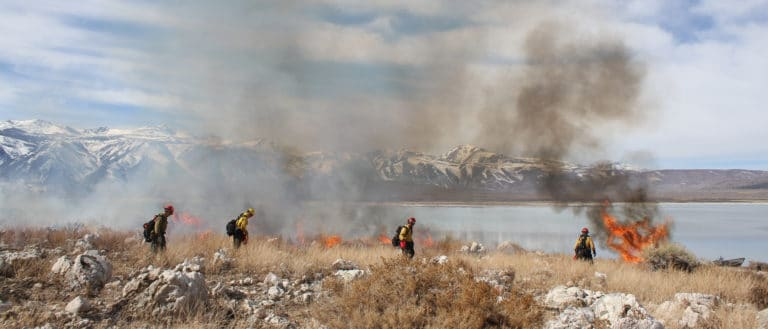 Wildland firefighters walking across rocky dry brush with flames and smoke rising against the backdrop of Mono Lake and the Sierra Nevada.