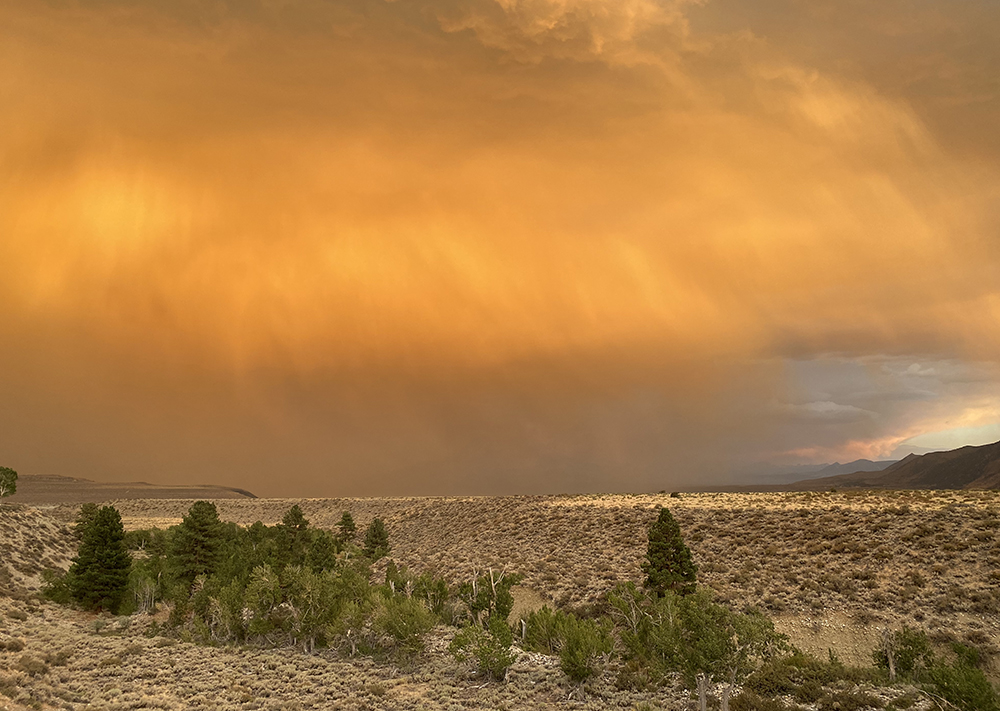 The sky glows burnt orange as gray lines of rain obscure the view of the mountains. Sagebrush and green trees stand in the foreground under afternoon light.