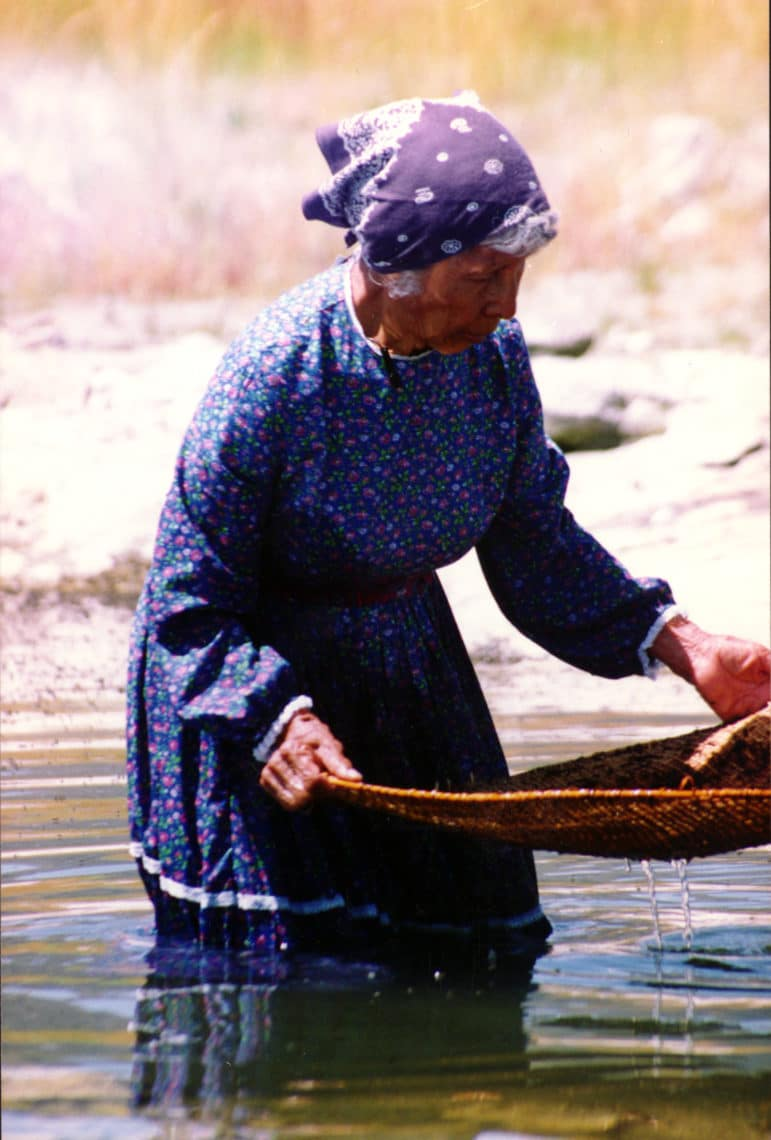 A Kutzadikaa Paiute woman wearing a long dress and bandana in her hair holds a large, shallow basket as she stands knee-deep in Mono Lake scooping up alkali fly pupae.