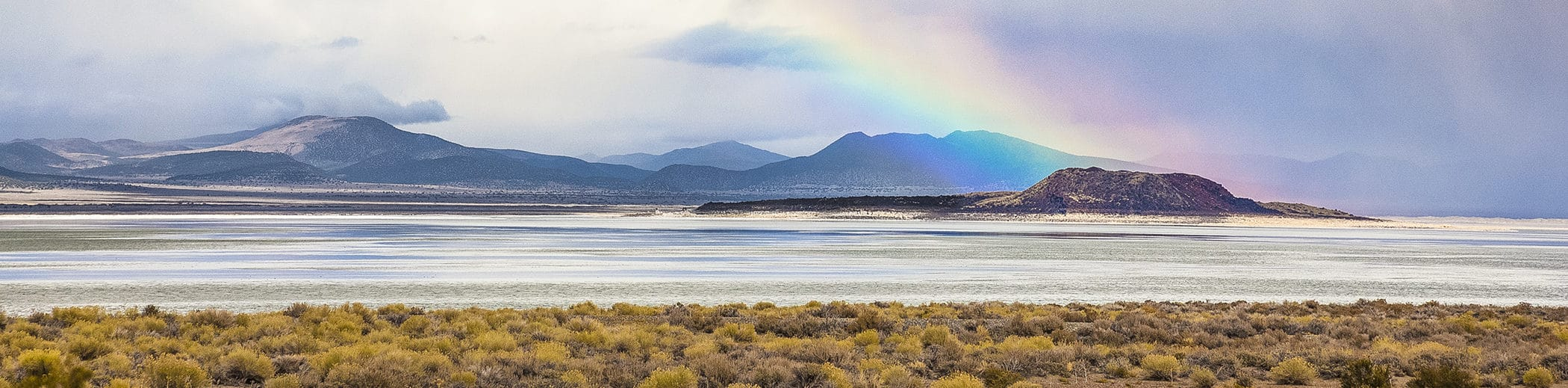 A bright rainbow ends at the black island of Negit in a silvery Mono Lake with storm clouds around and golden bushes in the foreground.