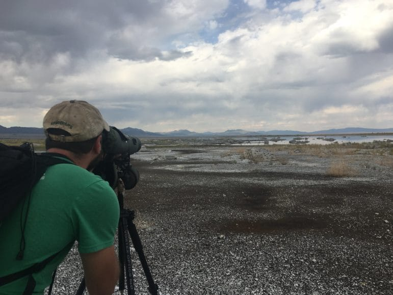 A person stands on a black and white rocky ground and looks into a spotting scope out towards a rocky shore of Mono Lake with desert hills and a dramatically cloudy sky in the distance.