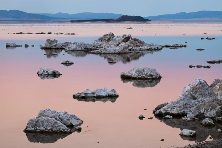 Sunset colors of pink and blue on a glassy Mono Lake with tufa mounds in the foreground, the lake covered in dots of Eared Grebes in the background, and the black volcanic island of Negit in the distance.