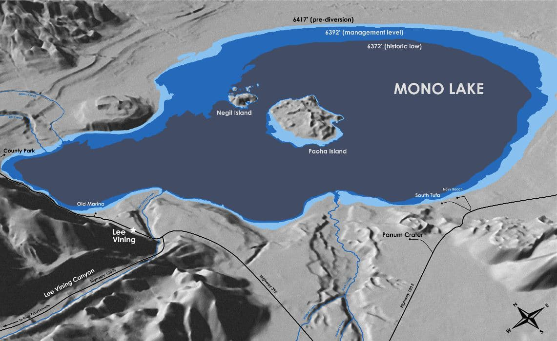 Stylized graphic map showing Mono Lake's different levels over time, including the pre-diversion level, management level, and historic low level.