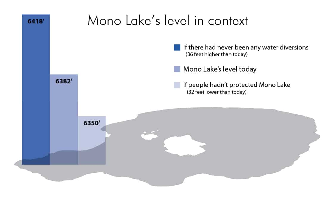 Graphic showing Mono Lake's level if there had never been any water diversions, 36 feet higher than present, the lake level at present, and the level if people hadn't protected Mono Lake, which is 32 feet lower than today.