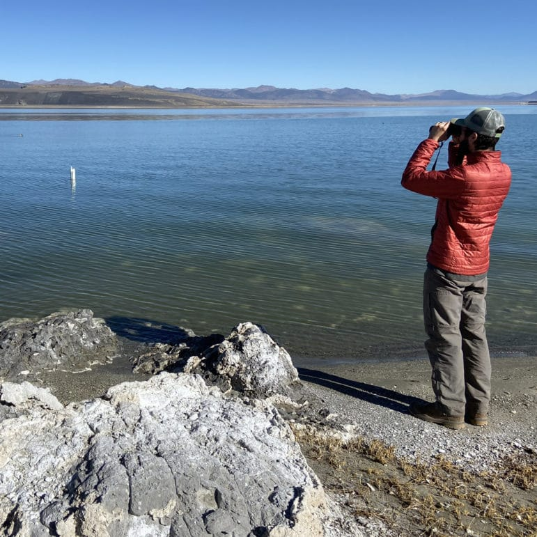 Person with binoculars standing on a shoreline looking out at a lake level gauge in Mono Lake.