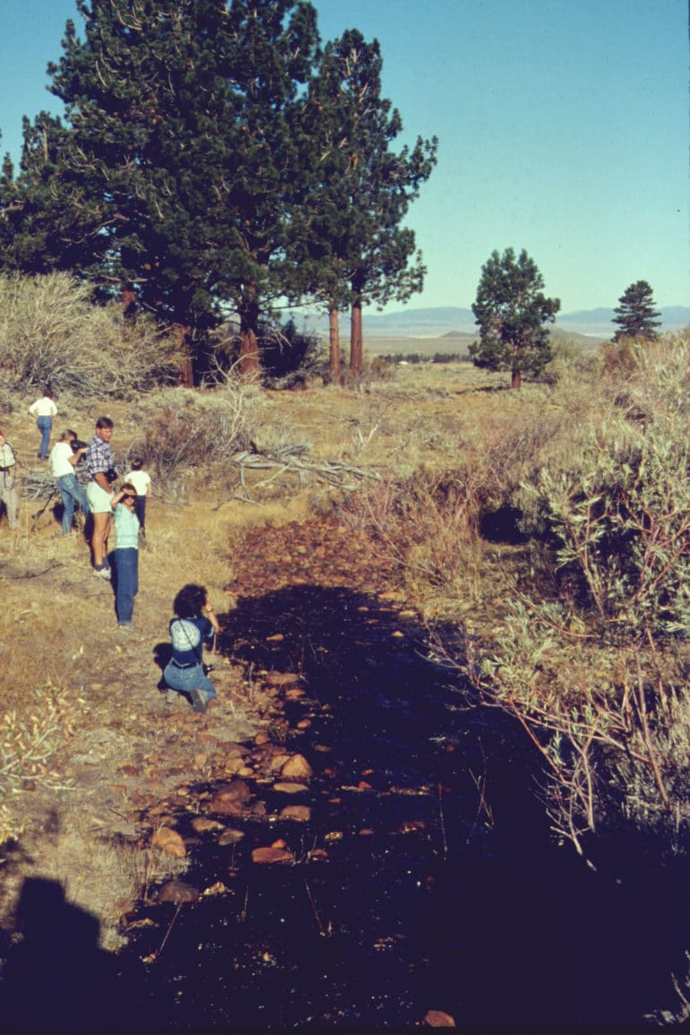 Water spills slowly down a dry creek bed of cobblestones as 7 people look on and walk beside the creek through sagebrush and past tall pine trees.