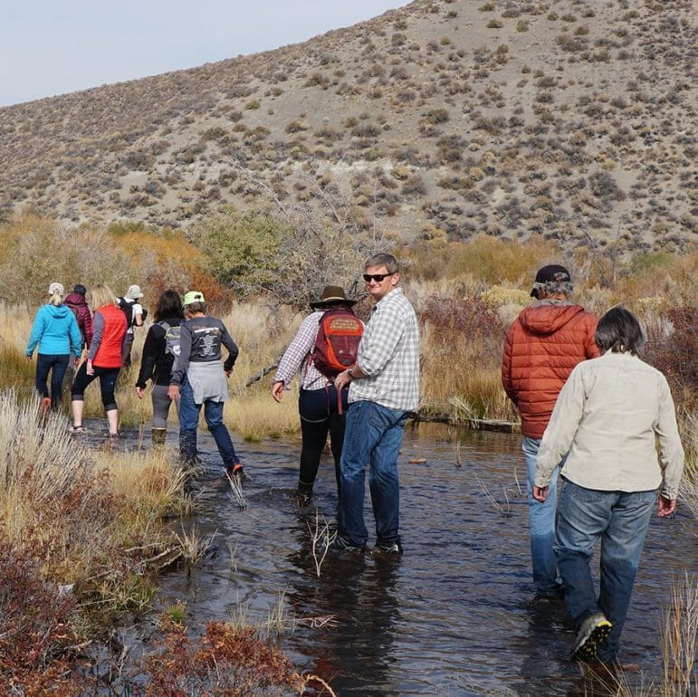 Ten people are walking in a stream through a landscape of shrubs and willows in fall colors of dusty yellow and rusty red, and they are walking together towards an unknown destination in the distance.
