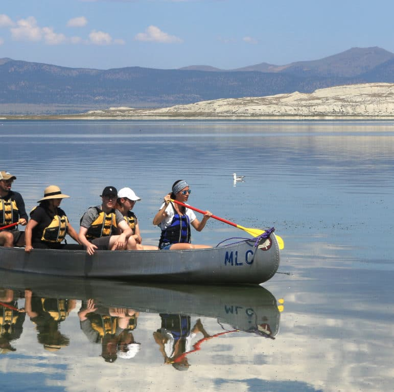 Five people ride in a metal canoe on a glassy Mono Lake with blue skies and beautiful puffy clouds and bright vibrant colors with a California Gull floating on the water in the background and a large white island, Paoha, in the distance.