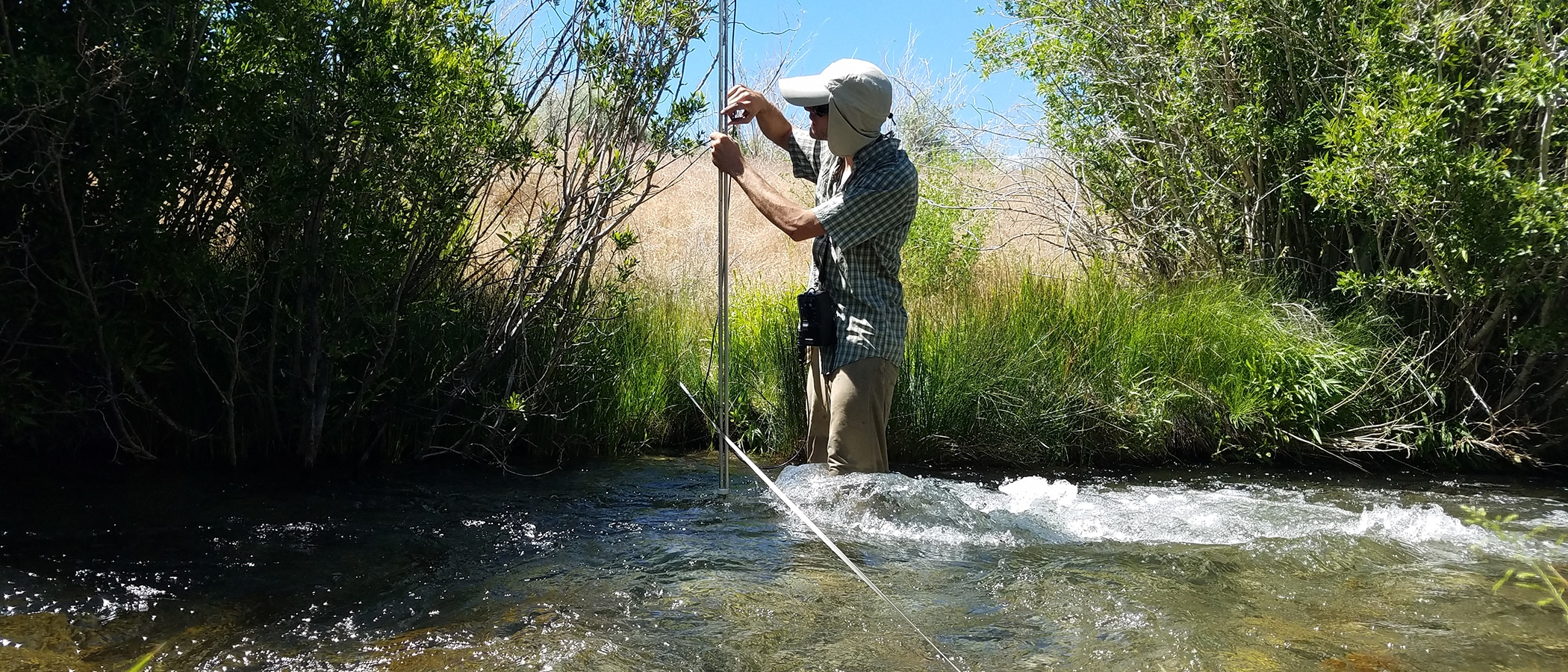 Field technician stands knee deep in a stream with a tall instrument that he is holding vertically in the stream with a long measuring tape going from across the stream bank, and there are green grasses and willows and rushing water.