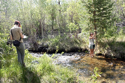 Two people at a creek, one person standing in it with a measuring instrument and the other is standing on the stream bank recording data.