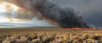 A wildfire with red and orange flames and a large plume of dark smoke in a large open expanse of sagebrush along the shore of Mono Lake.