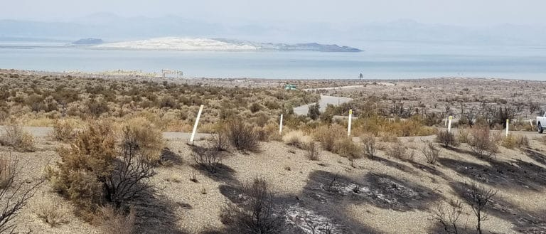 View from the road to South Tufa with burned vegetation and black fire scars with Mono Lake in the smokey distance.