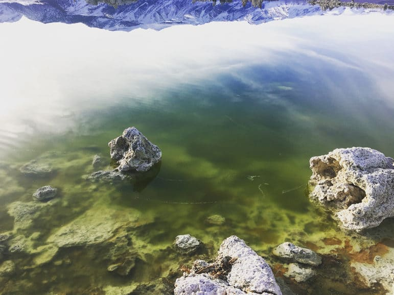 In the foreground, a close up of algae-filled lake water is bright green and shows tufa beneath the surface. The green turns into a reflection of the cloudy sky, and eventually a perfect reflection of an upside-down snowy mountain range