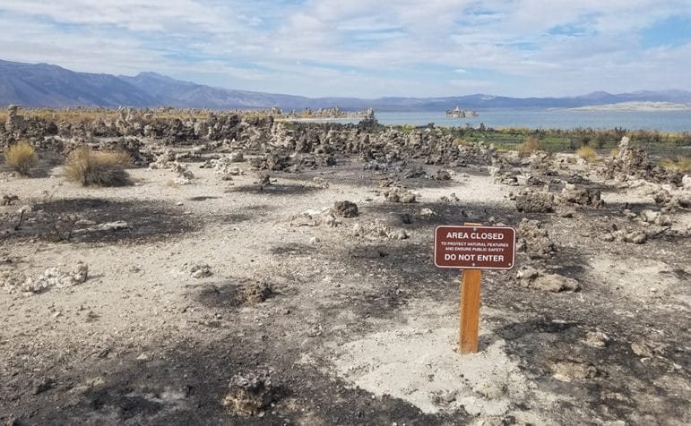 "An ""Area Closed"" sign is stuck into the ground marking a section of the beach with burnt tufa patches."