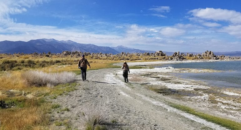 A man and a woman with their backs to the camera walk towards a grouping of tufa along the gray rocky beach path through green and yellow grasses.