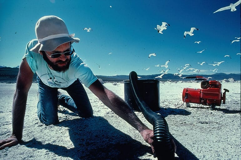 A bearded man in sunglasses and a hat kneels on the sunny beach holding a black pipe connected to a red machine. Seagulls take flight behind him.