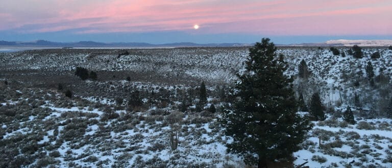 A small full moon sits in the middle of a blue to pink color gradient sunset above snow spotted trees.