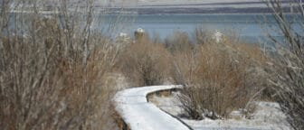 The snow covered boardwalk snakes through bare brambles towards Mono Lake.