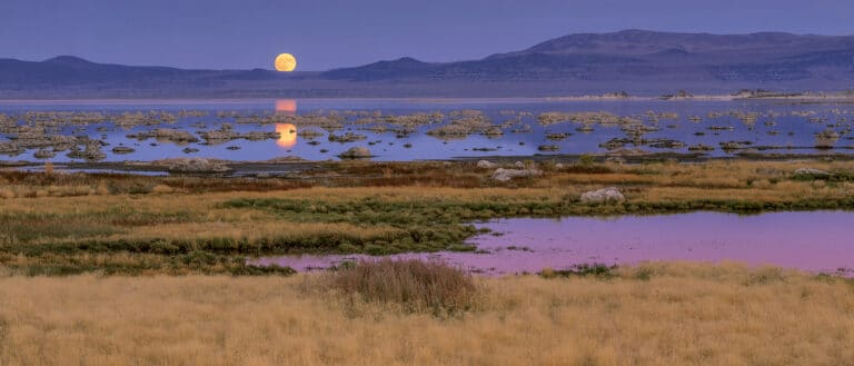 A huge orange full moon hangs in a purple sky and is reflected over the blue-purple water of Mono Lake.