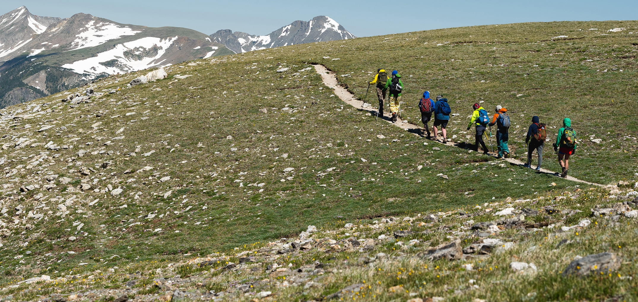 8 hikers with colorful packs and poles walk along a dirt narrow path on a grassy hill towards snowcapped mountains.