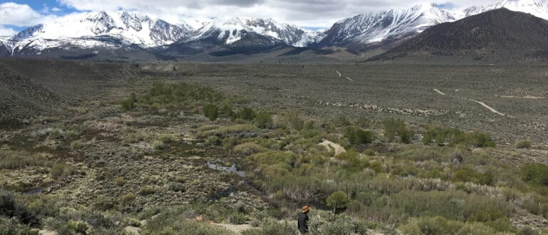 Snowy Sierra Nevada mountains in the distance with Rush Creek flowing down and through the sagebrush.