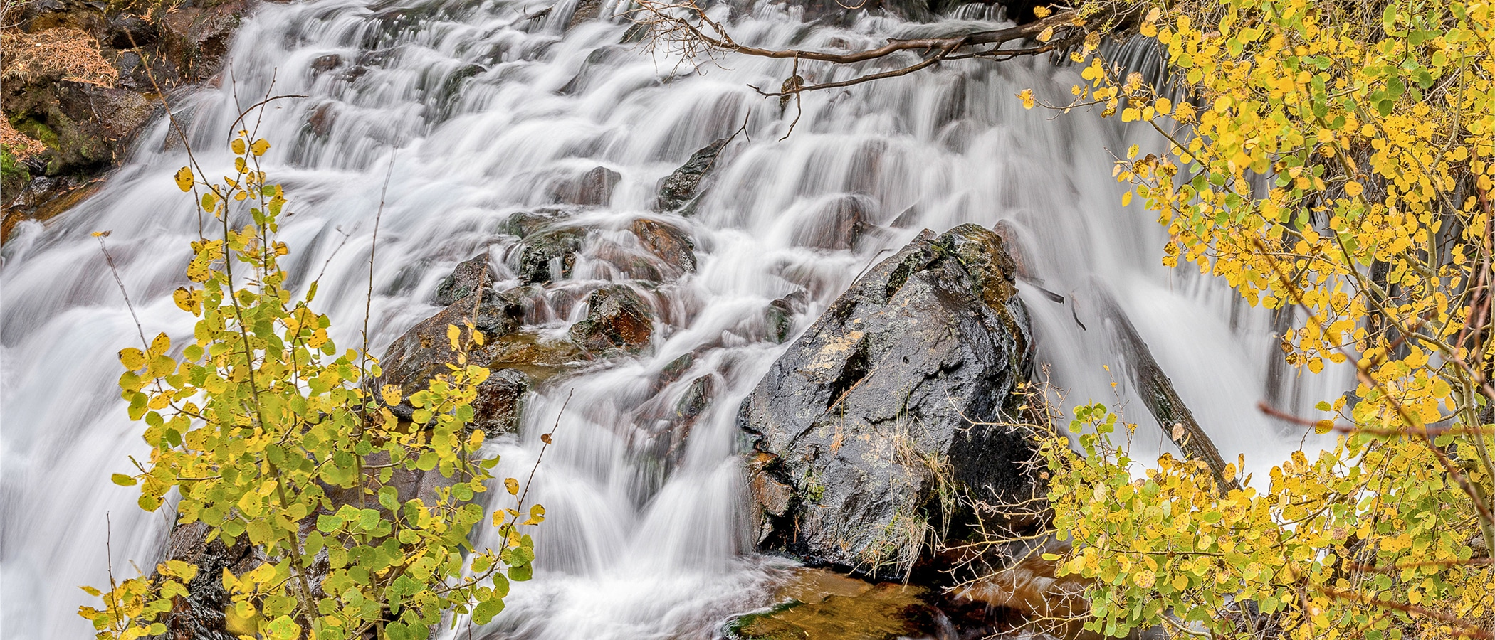 White water rushes down a rocky falls with yellow aspens in front.