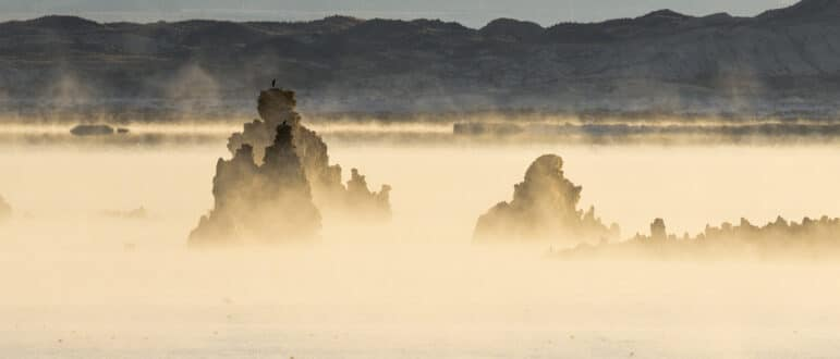 Yellow fog rises from Mono Lake, obscuring the darkened tufa towers.