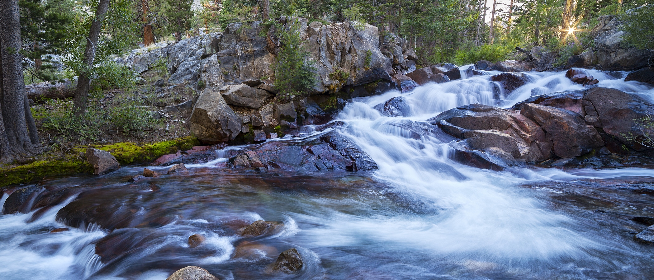 White water rushes over large rocks and swirls around a bend in a green mossy forest.