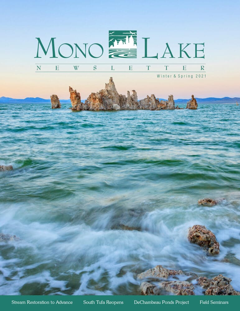 Text over above image reads Mono Lake Newsletter Winter and Spring 2021 in turquoise font with the Mono Lake Committee Logo.
