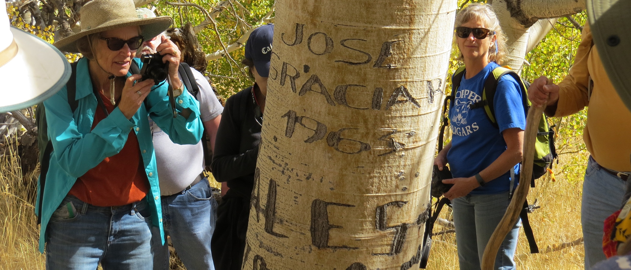 People gather around a tree with names carved into it, and one woman takes a picture.