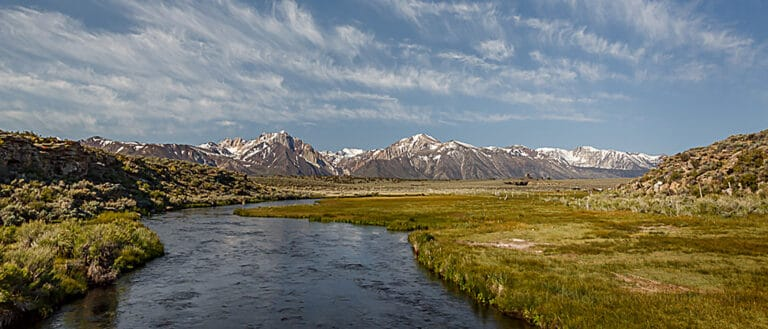 A wide blue stream flows through green grassy fields with sagebrush on either side, and into the snowy gray mountains ahead.